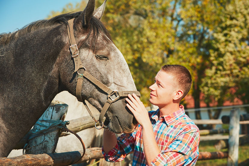 Equine Assisted Therapy in Tecumseh, OK